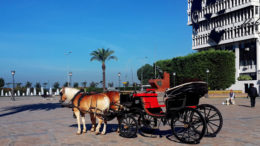 İzmir'e Ne Zaman Gidilir?