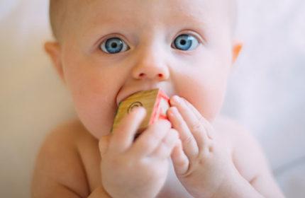 Bebek Diş Buğdayına Giderken Ne Hediye Alınır?